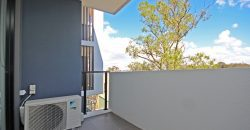 Homebush spacious one bed apartment for rent