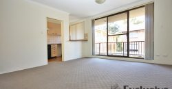 Pyrmont large 2 bed unit for rent